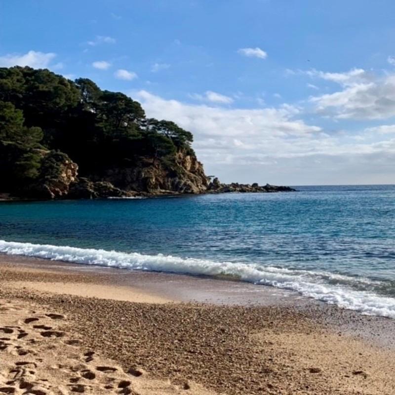 Aprovada una primera moratòria de tramitacions i llicències en la franja litoral de la Costa Brava